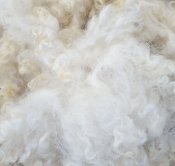 washed wool