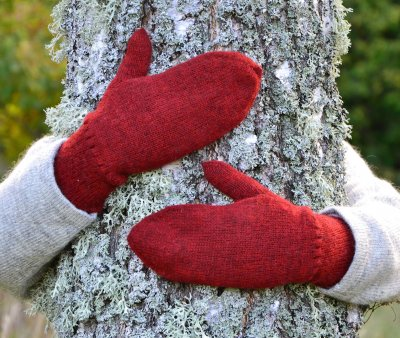 3401 - Mittens in double knit